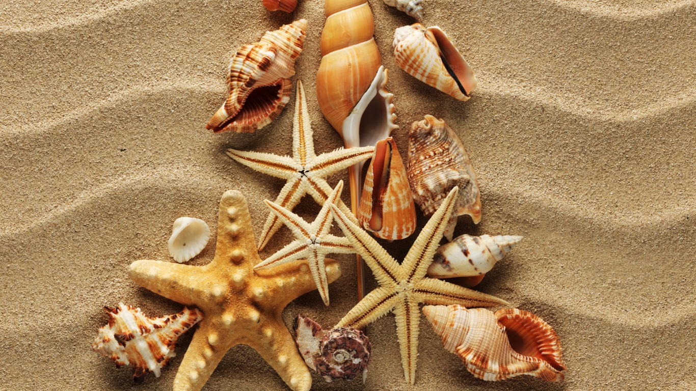 Seashells Wallpaper Collection Most Beautiful Places In HD Wallpapers Download Free Images Wallpaper [1000image.com]