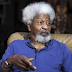 Prof Wole Soyinka Studied All 2019 Presidential Candidates, Endorses Moghalu For President