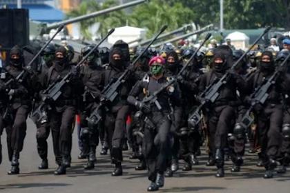 Diakui Dunia, Ini Dia Deretan Pasukan Elite Khusus TNI