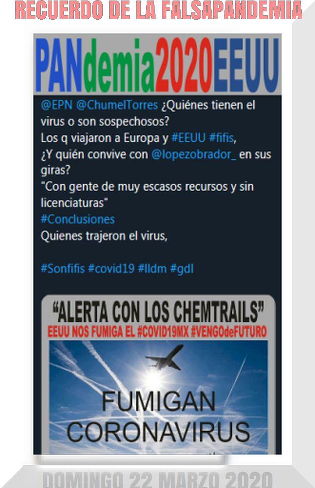 https://resistek2018.blogspot.com/2020/04/envivo-ricardo-belmont-sustenta-la.html