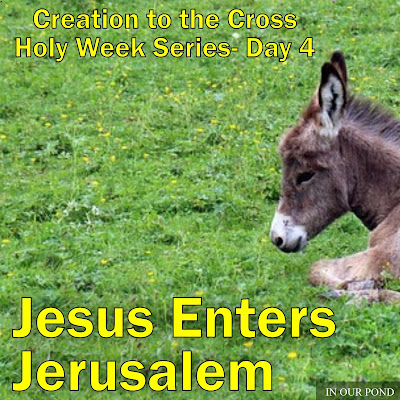 Jesus Enters Jerusalem- Creation to the Cross Holy Week Series for Kids- from In Our Pond