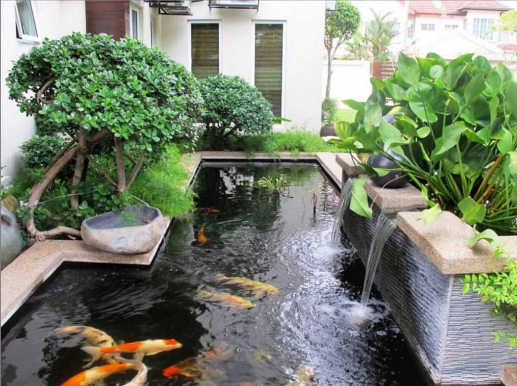 Contoh Desain Taman Minimalis Indah dengan Kolam Ikan