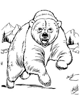 Gambar mewarnai beruang untuk anak - 8