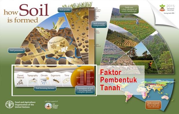 Faktor Pembentuk Tanah