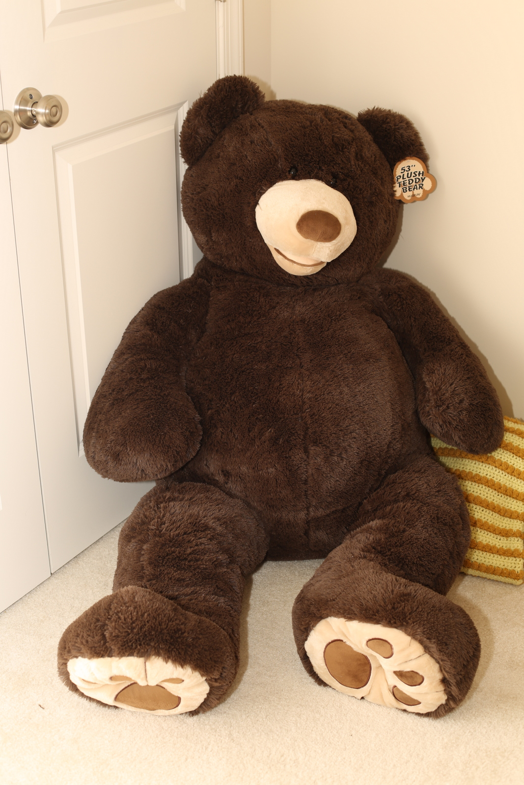 1000+ Images About Costco Bear On Pinterest