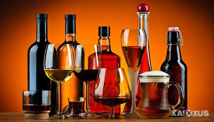 Minuman yang dilarang untuk ibu hamil - Minuman beralkohol