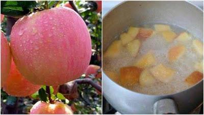 Buah Apel di Rebus!? Baru Tahu Ternyata Manfaatnya Segudang Bund, Untuk Kesehatan bagus banget nih. Simak Penjelasannya yuk