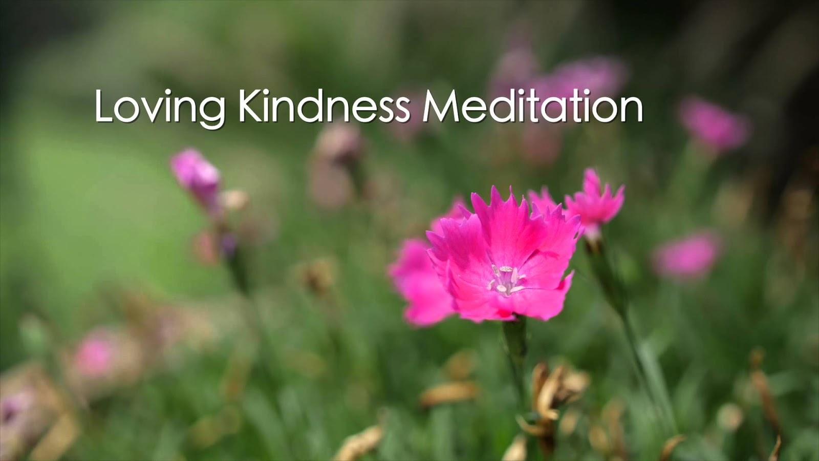 Loving Kindness Quotes Loving Kindness Meditation  Metta Meditation  Quotes India