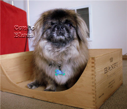 how to make DIY wine crate dog bed