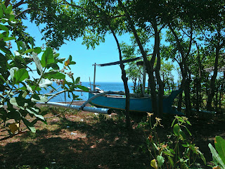 Fisherman Fishing Boat Retired In The Beach Plant Tree