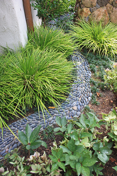 Amenajari gradini proiectare gradini peisagist mai 2012 Plante decorative
