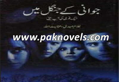 Urdu Novel By Inayatullah