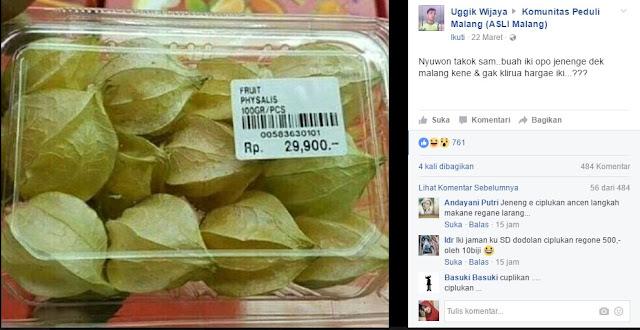 Harga buah ciplukan cukup mahal