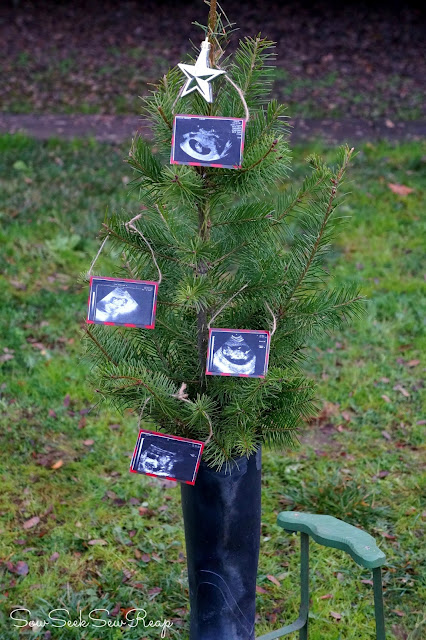 family tree/christmas tree maternity reveal