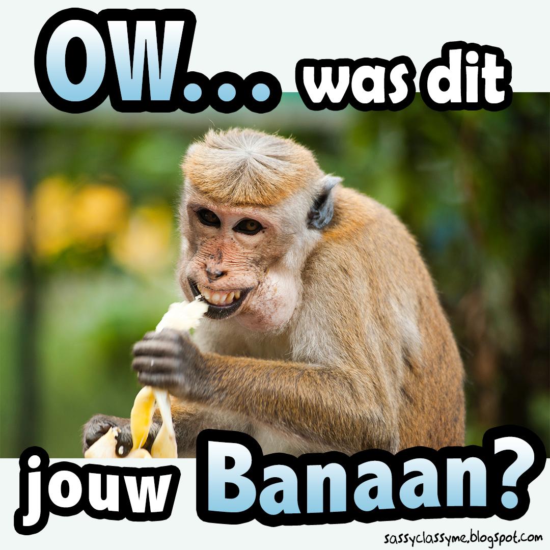 is dit jouw banaan the sassy classy me