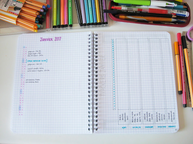 bullet journal monthly log tracker