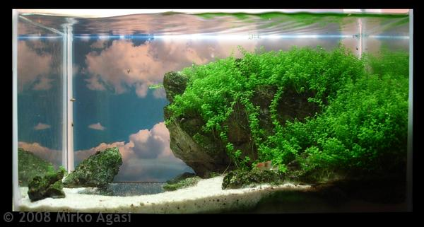 How To Make Aquascape With Simple Design House Design And Interior