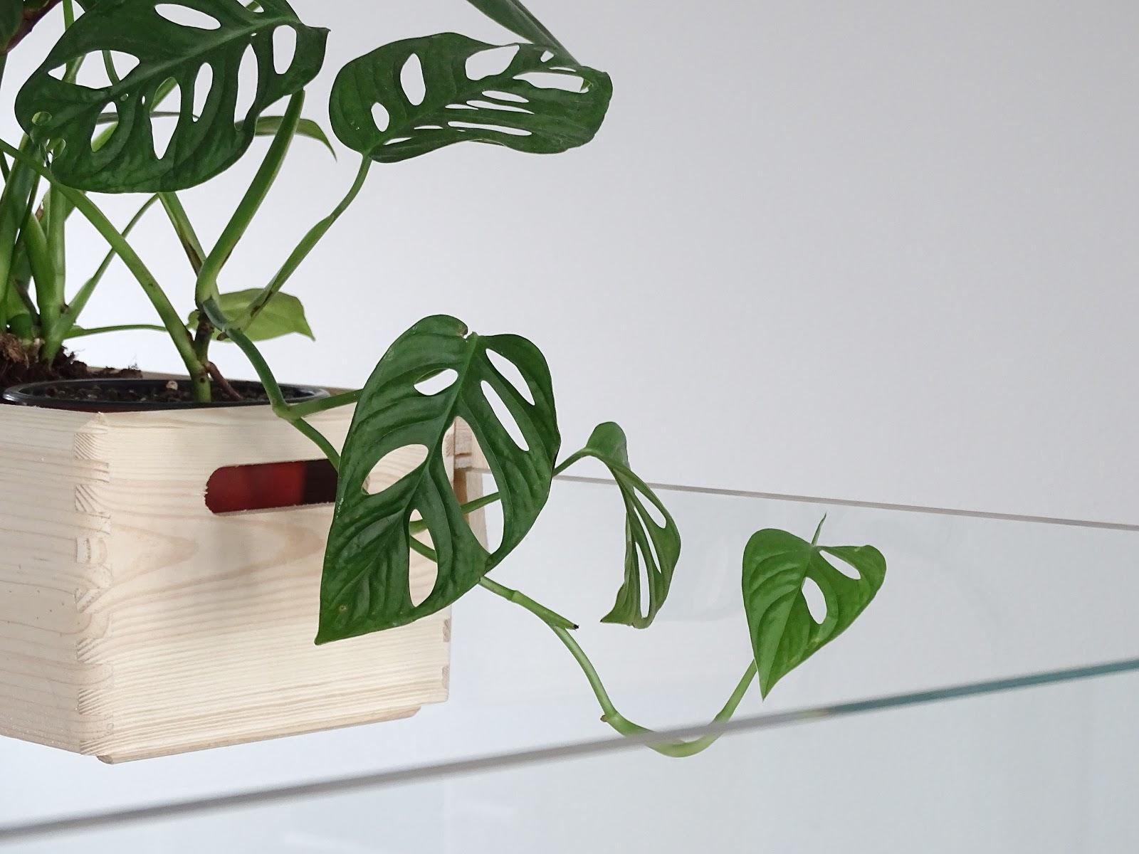 auf der mammilade n seite des lebens personal lifestyle diy and interior blog diy. Black Bedroom Furniture Sets. Home Design Ideas