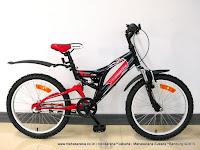 Sepeda Gunung Remaja United Yosemite Fire 3 Speed Shimano Nexus Coaster Hub 20 Inci