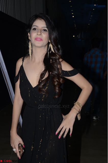 Kashish Vohra at Rogue Movie Audio Launch ~  (6).JPG