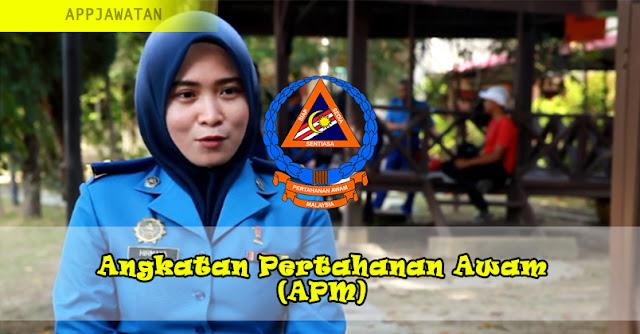 Angkatan Pertahanan Awam (APM)