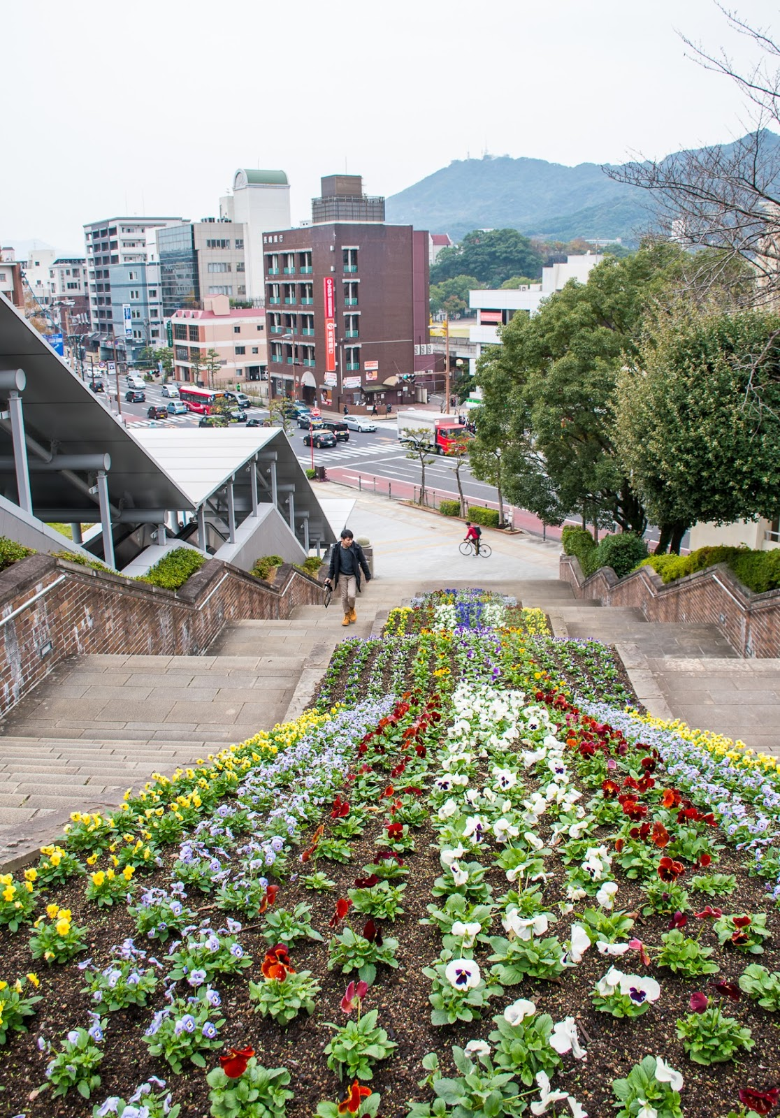 autumn winter architecture and flowers in nagasaki up to peace park