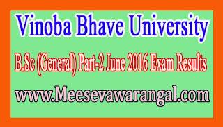Vinoba Bhave University B.Sc (General) Part-2 June 2016 Exam Results