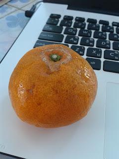 ส้ม (Orange)