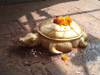 hinduism,hindu gods,turtle idol in temple,tortoise idol in temples,kasav in mandir,hindu temples in india,turtle in temple,tortoise in temple,kachua in temple,turtle replica,replicas in hindu temple,lord vishnu,lord shiva,main temple