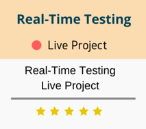 Realtime Project Training