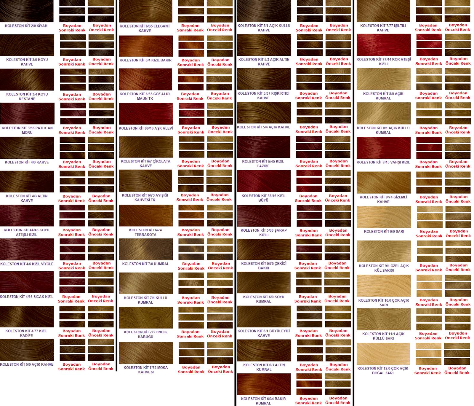 Koleston Saç Renk Kataloğu