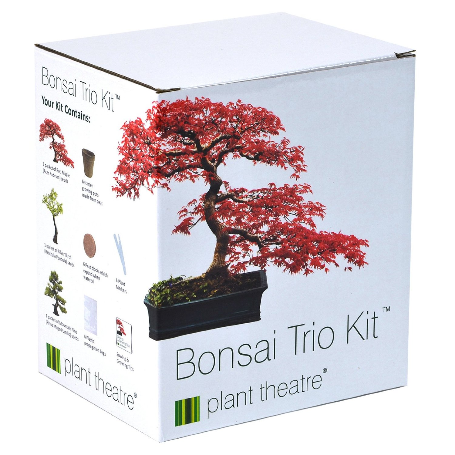 DayUKDeals Suitable For Summer Plant Theatre Bonsai Trio Kit