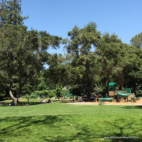 playground at Shoup Park in Los Altos, California