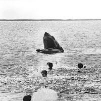 Escena eliminada Tiburón