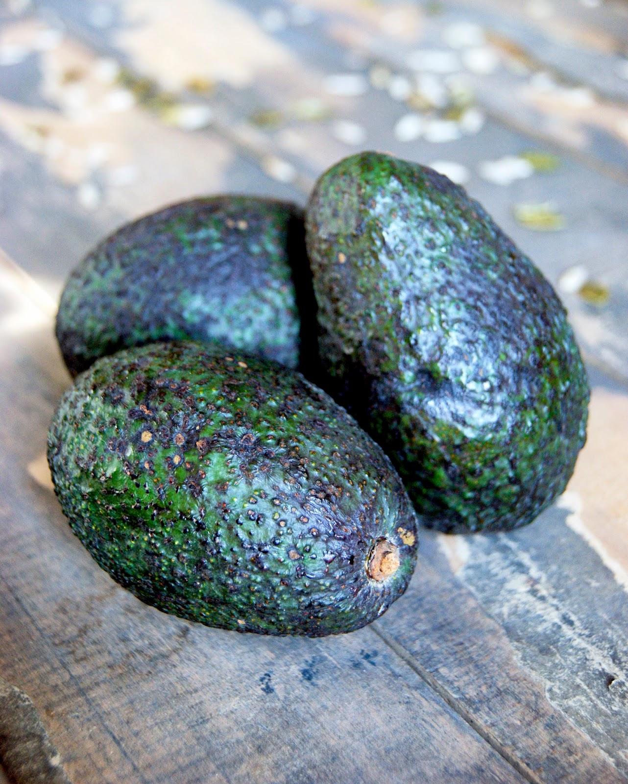 Double Chocolate Raw Protein Bars Vegan Nut Free Sugar