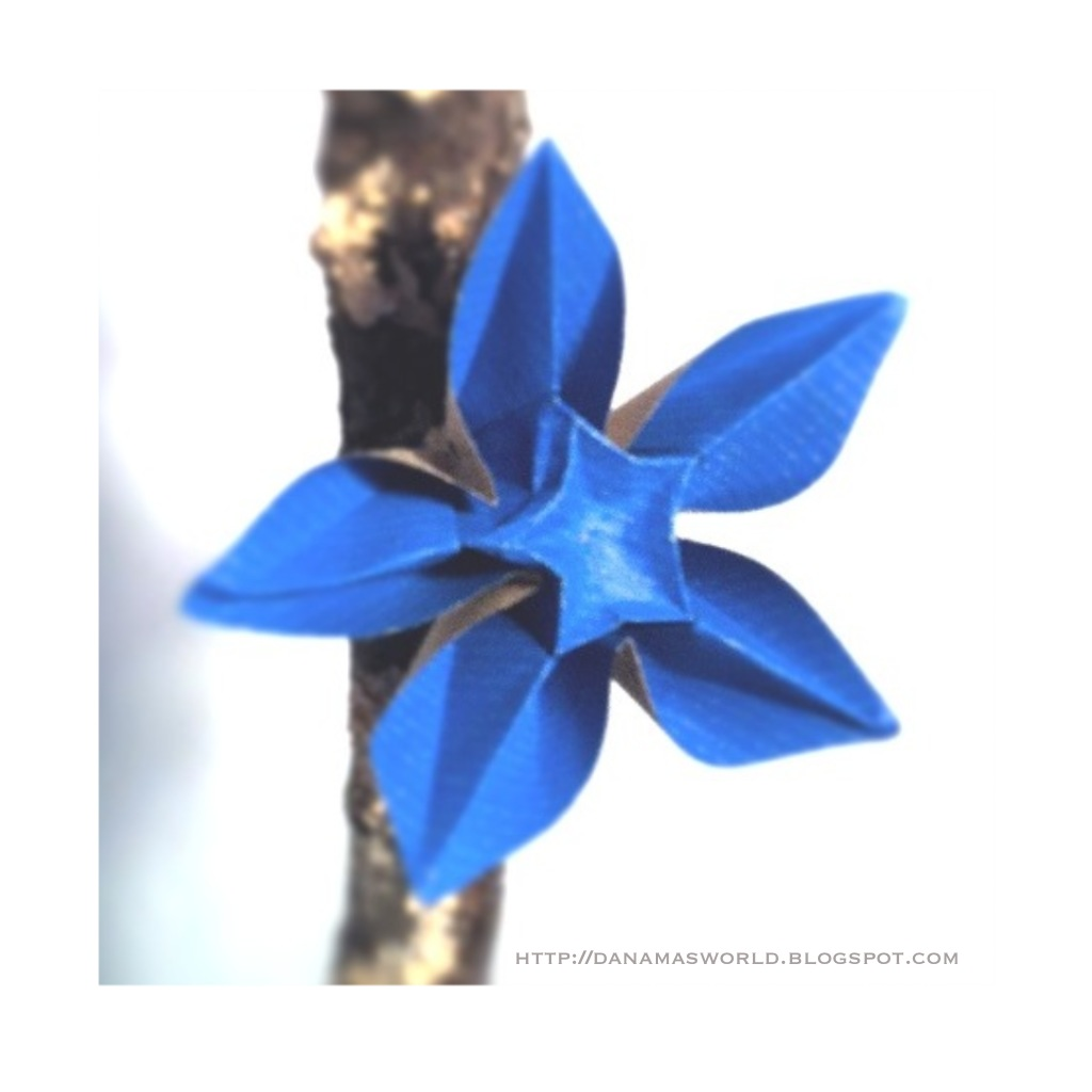 Carambola Flower Origami Diagram Wiring For A Trailer Plug 7 Pin Danamas World