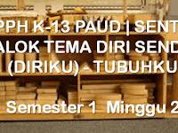 RPPH K-13 PAUD | SENTRA BALOK TEMA DIRI SENDIRI (DIRIKU) - TUBUHKU