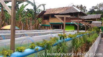 Cervantes Farm in CDO Promotes Square Foot Gardening and FAITH