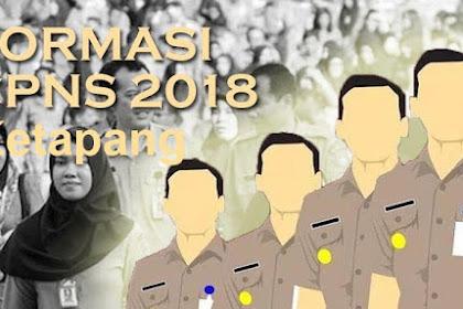 Formasi CPNS Ketapang 2018