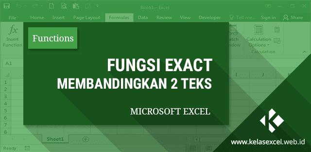 Rumus EXACT Excel : Cara Menggunakan Fungsi Exact Pada Microsoft Excel