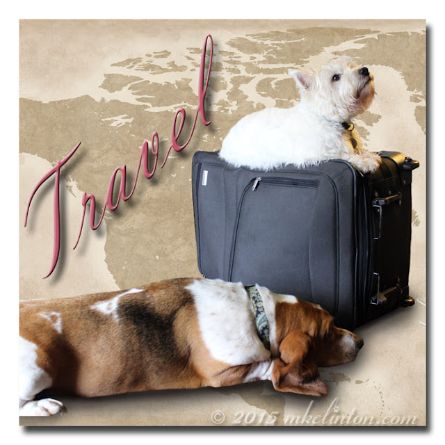 Travel meme with Bentley Basset and Pierre Westie