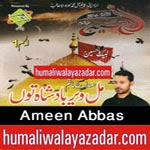 http://audionohay.blogspot.com/2014/10/ameen-abbas-ansar-party-nohay-2015.html