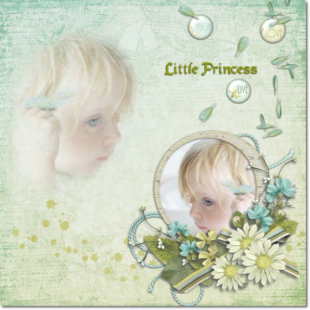 DSB  Little Princess