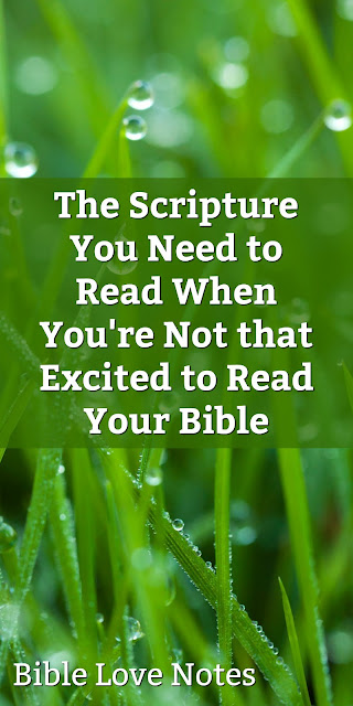 If you think you are always going to be excited to read your Bible, think again. But this Scripture will keep you doing it.