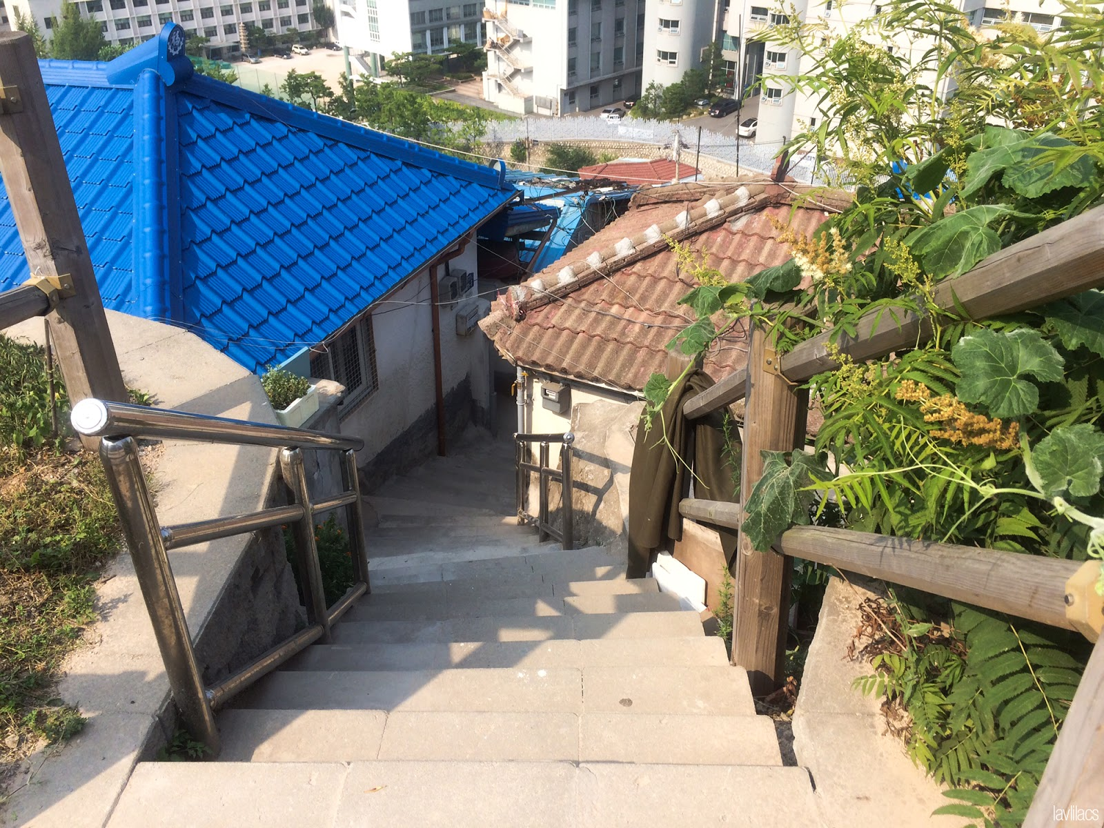 Seoul, Korea - Summer Study Abroad 2014 - Seoul Fortress Trail - Naksan Trail Course - Stairs to nearby residential neighborhood
