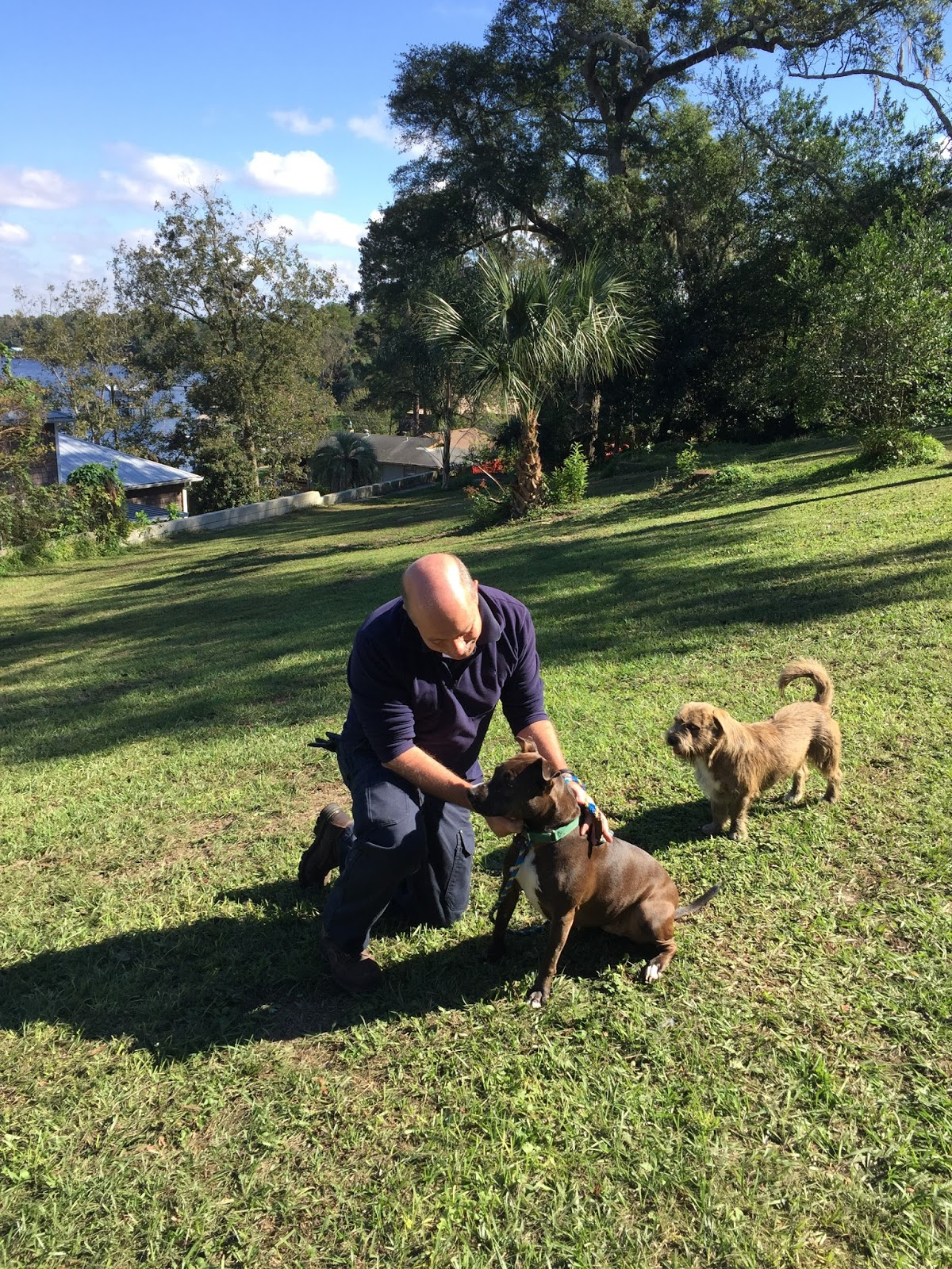 Canine Aggression Issues with Jim Crosby