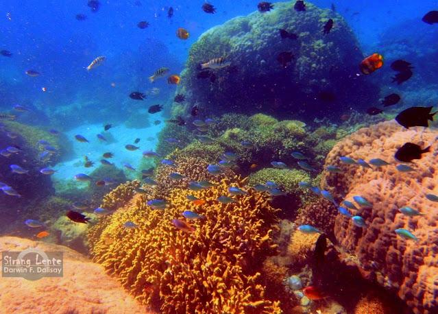 tourist destinations in Oriental Mindoro