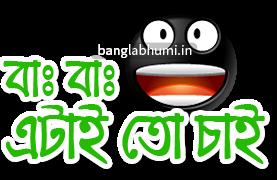 Etai To Chai Bengali Funny Comment Sticker