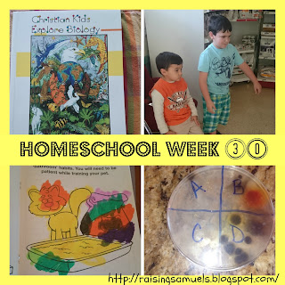Homeschool Week 30
