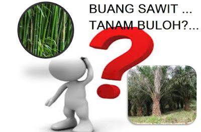 Anim Agro Technology: TANAM BULUH, LUPAKAN SAWIT